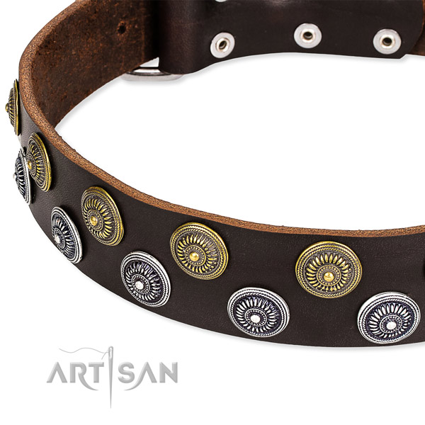 Genuine leather dog collar with amazing adornments