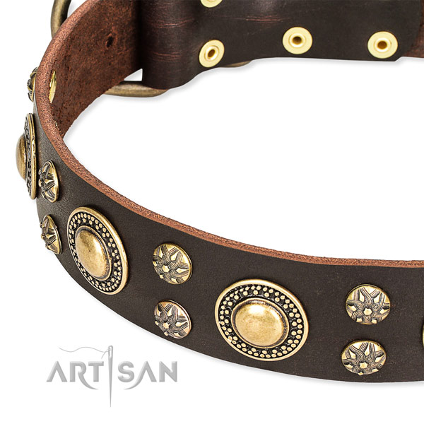 Leather dog collar with top notch embellishments