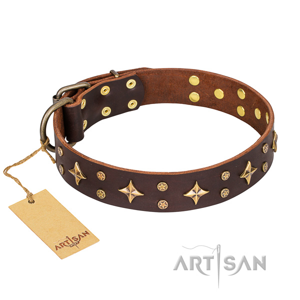 Significant full grain leather dog collar for handy use