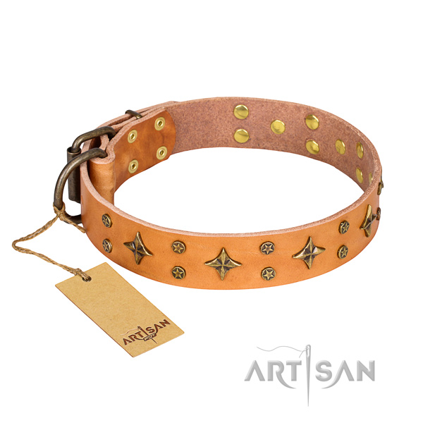 Incredible natural genuine leather dog collar for stylish walking
