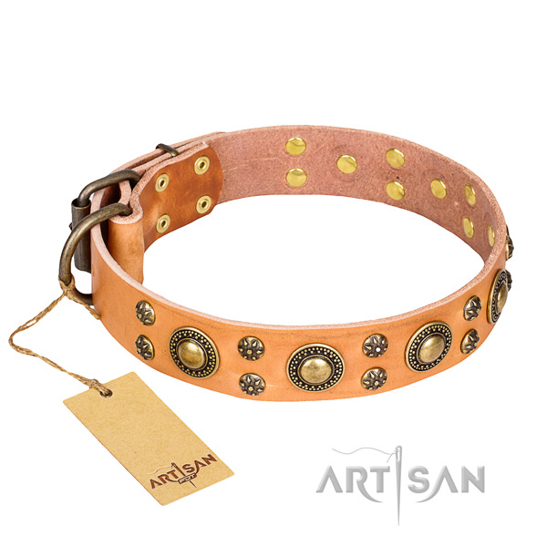 Fashionable leather dog collar for walking
