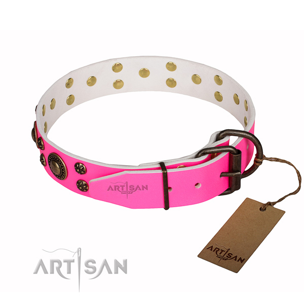 Amazing leather dog collar for daily walking