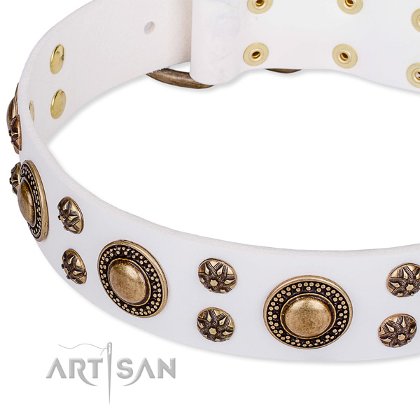 Natural genuine leather dog collar with incredible studs