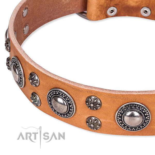 Daily use full grain genuine leather collar with durable buckle and D-ring
