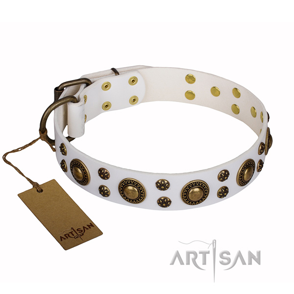 Daily use genuine leather collar with adornments for your pet
