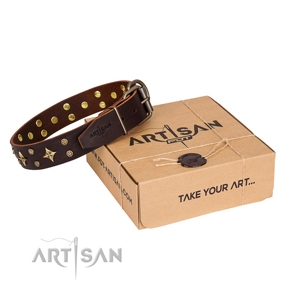 Embellished full grain leather dog collar for stylish walks