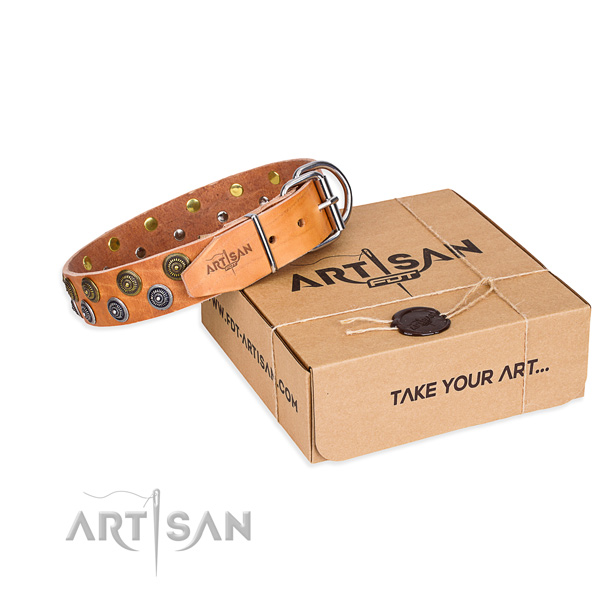 Full grain natural leather dog collar with embellishments for daily use