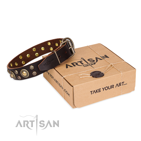 Top quality full grain natural leather dog collar for everyday walking