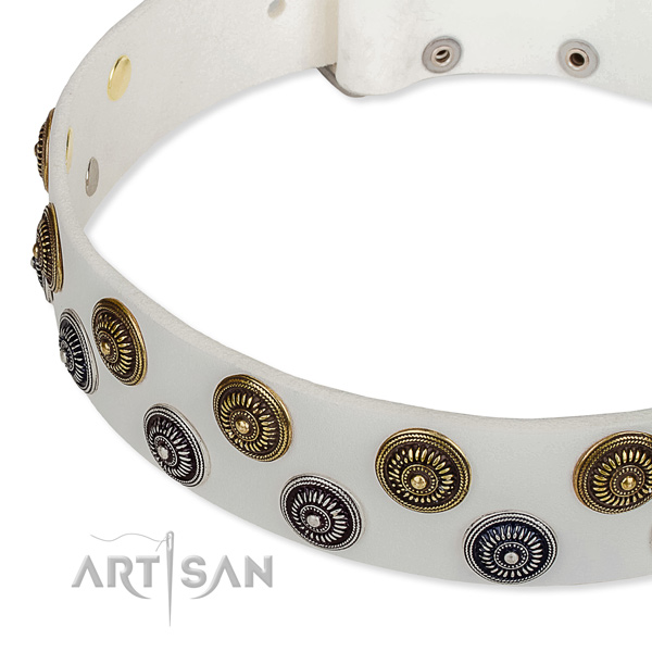 Genuine leather dog collar with stunning studs