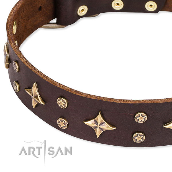Full grain genuine leather dog collar with fashionable adornments