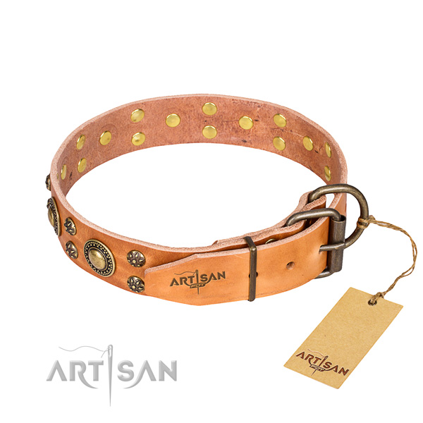 Daily use leather collar with decorations for your pet