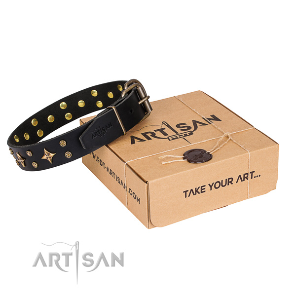 Adorned leather dog collar for everyday use
