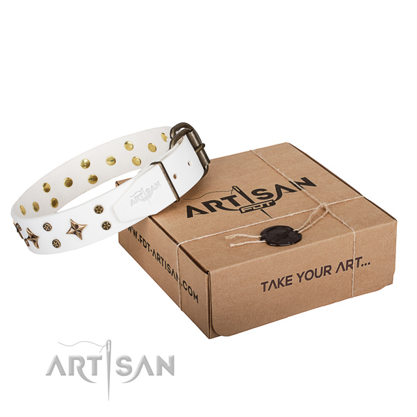 Adorned full grain natural leather dog collar for everyday use