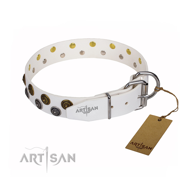 Everyday walking genuine leather collar with studs for your four-legged friend