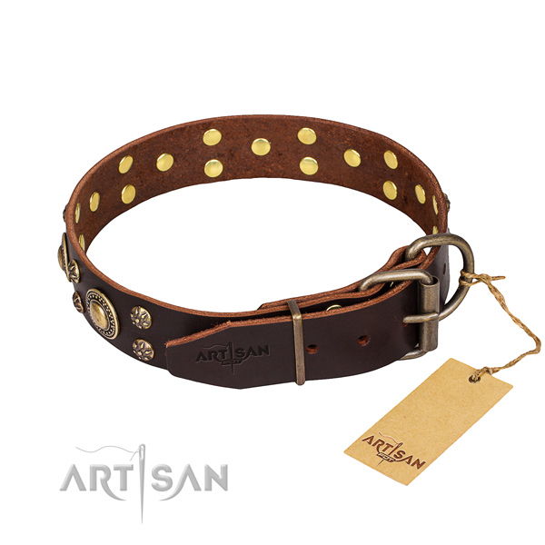 Stylish walking full grain leather collar with studs for your dog