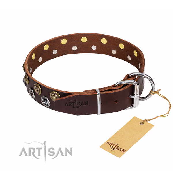 Everyday use full grain leather collar with decorations for your four-legged friend