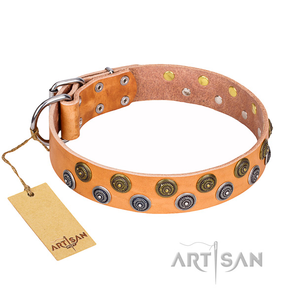 Exquisite full grain genuine leather dog collar for everyday walking