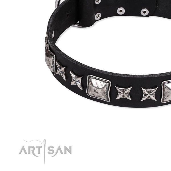 Natural genuine leather dog collar with adornments for daily use