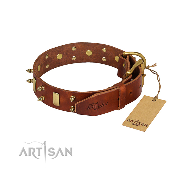 Sturdy leather dog collar with non-rusting elements