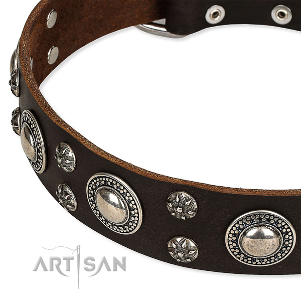 Easy to put on/off leather dog collar with resistant chrome plated buckle and D-ring