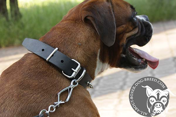 Strong D-Ring on Leather Collar for Boxer