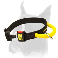 Black as night Dog Collar