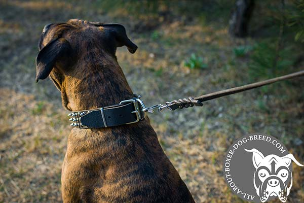 Leather Boxer Collar with Buckle for Quick Fixation
