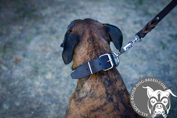 Leather Boxer Collar with Steel Nickel Plated Buckle