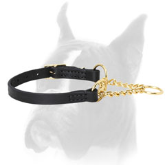 Brass and Leather Martingale Collar