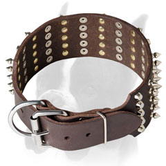 Extra wide collar for easy controlling your Boxer