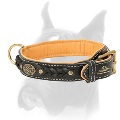 Luxury decorated leather Boxer collar with brass medallion and braids