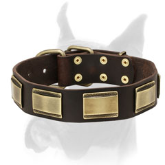 Luxury style leather Boxer collar with old style brass plates