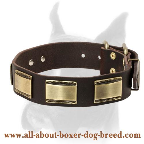 Center Ring Dog Collar Black Leather