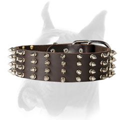 Spiked Boxer collar
