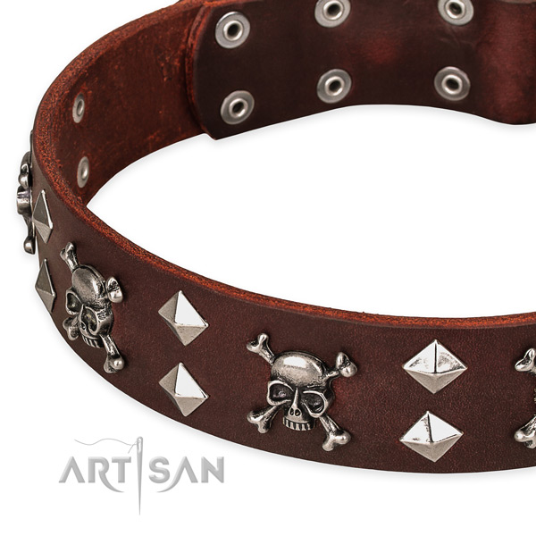Day-to-day leather dog collar for fail-safe use