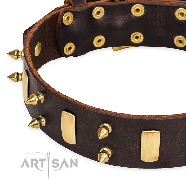 Easy to put on/off leather dog collar with extra strong brass plated buckle and D-ring