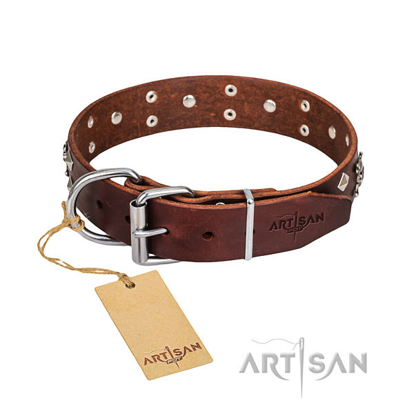 Reliable leather dog collar with rust-resistant elements