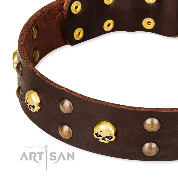 Everyday leather dog collar for safe pet control
