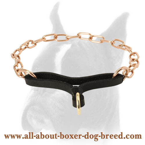 Curogan Boxer Martingale Collar for Obedience Training