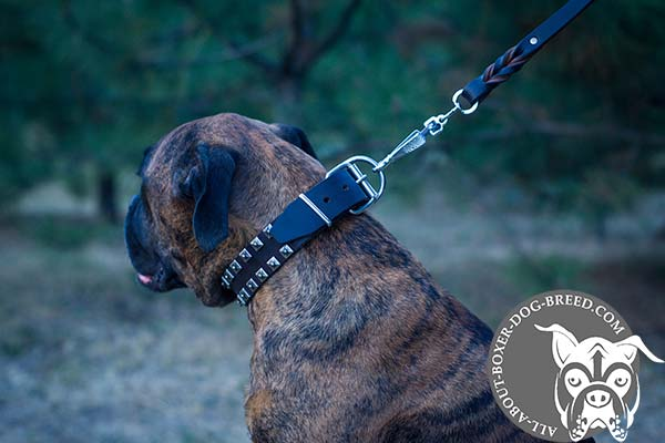 Leather Dog Collar with Reliable Buckle and D-Ring for Boxer