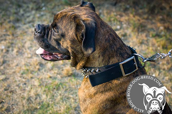 Easy Adjustable Nylon Boxer Collar