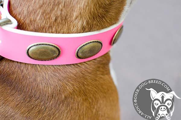 Pink Leather Collar with Brass Buckle and D-Ring for Boxer