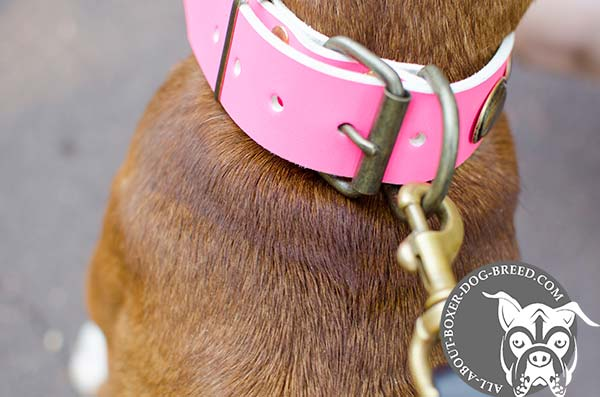 Strong Pink Leather Collar with Brass D-Ring for Boxer