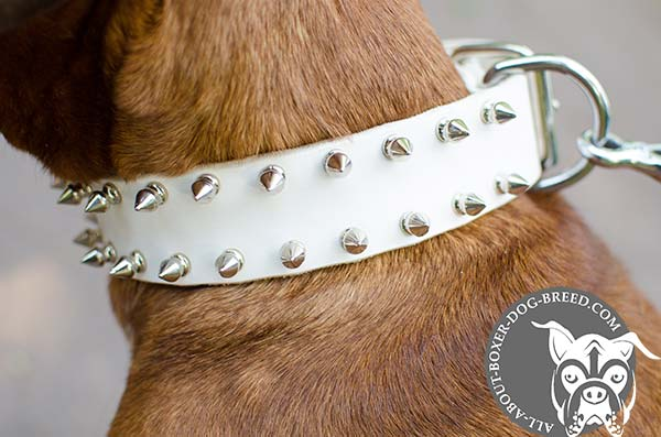 Multifunctional White Leather Boxer Collar