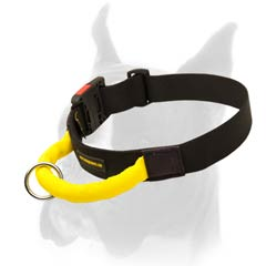 Nylon Boxer Collar for much durability