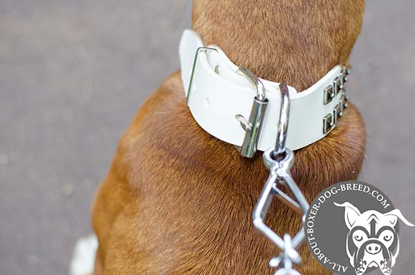 White Leather Boxer Collar with Rust Proof Hardware