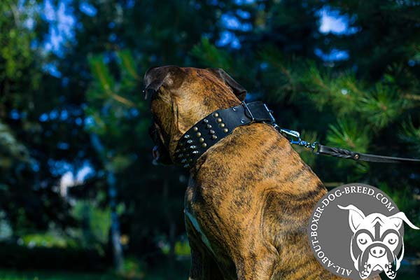 Adjustable Boxer Collar with Strong Buckle and D-Ring
