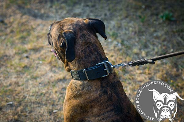 Leather Dog Collar with Strong Buckle and D-Ring for Boxer