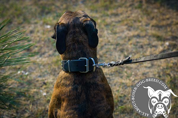 Easy Adjustable Leather Collar for Boxer