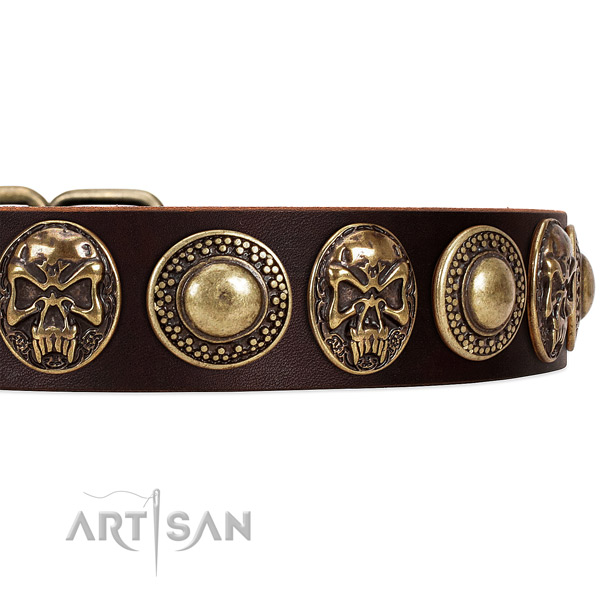 Full grain genuine leather dog collar with embellishments for stylish walking